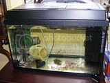Quarantine tank